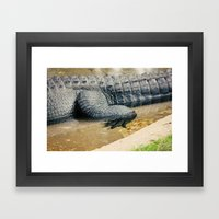 The Alligator Crawl Framed Art Print