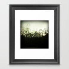 Southern Forest Framed Art Print