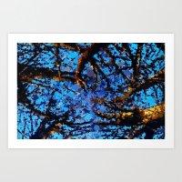 Around The Trees Art Print
