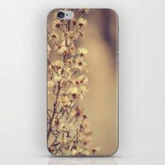 Sunday flowers iPhone & iPod Skin
