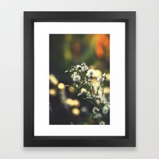 Magical Evenings Framed Art Print