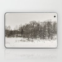 Winter Landscape II Laptop & iPad Skin