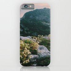 Mountain flowers at sunrise iPhone 6 Slim Case