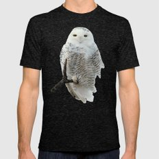 Snowy in the Wind (Snowy Owl) Mens Fitted Tee Tri-Black SMALL