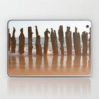 Cape Cod Laptop & iPad Skin