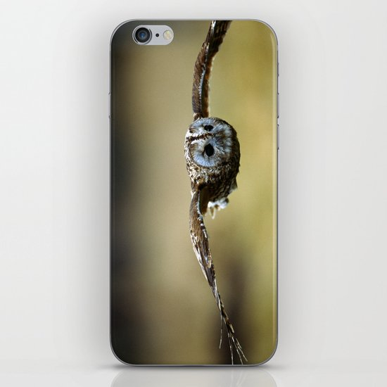 FLIGHT OF THE TAWNY OWL iPhone & iPod Skin