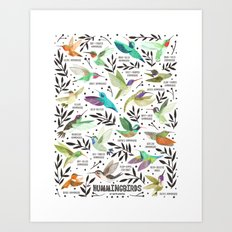 Hummingbirds of North America Field Guide  Art Print