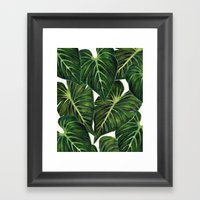 Tropical II Framed Art Print