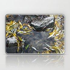Sirenity Laptop & iPad Skin