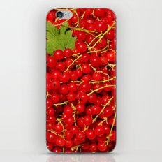Rubies iPhone & iPod Skin