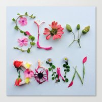 Botanical Font Canvas Print