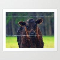 Moo Cow II Art Print