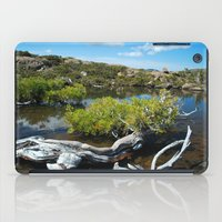 Alpine Moore iPad Case