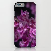 Red Bud Blossoms  iPhone 6 Slim Case