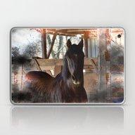 Rustic Horse Laptop & iPad Skin