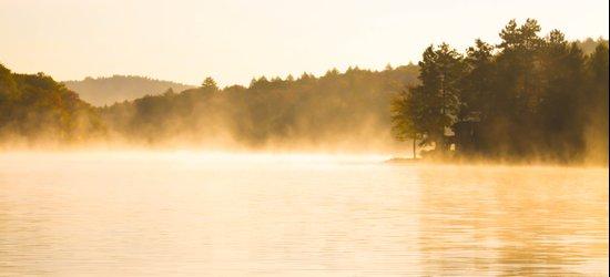Golden Pond Mists Art Print
