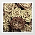 Brown Roses Art Print