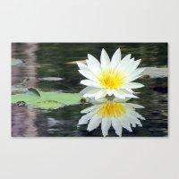 White Pond Flower Canvas Print