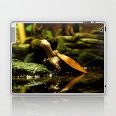 Mr. Turtle Workin' On His Tan Laptop & iPad Skin
