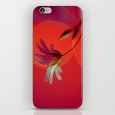 Tangerine Stitch iPhone & iPod Skin