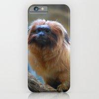 Monkey on Rope iPhone 6 Slim Case
