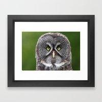 Give A Hoot Framed Art Print