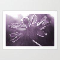 Lilac Light Art Print