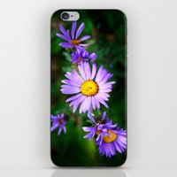 Purple Floral iPhone & iPod Skin