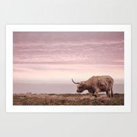 Sunset And The Highland … Art Print