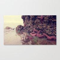 Starfish Addicted  Canvas Print