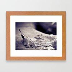 Muddy Leaf 3 Framed Art Print