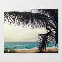 Sea and Palm  Canvas Print
