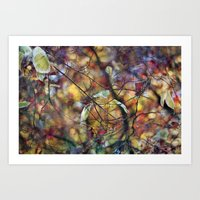Autumn Rainbows Art Print