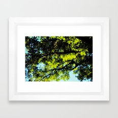 Warmth of Your Sun Framed Art Print