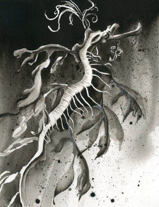 Seadragon Art Print