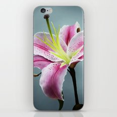 Pink Lily iPhone & iPod Skin