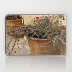 Courtyard Plants Laptop & iPad Skin