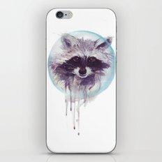 Hello Raccoon! iPhone & iPod Skin