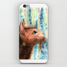 Brown kitty iPhone & iPod Skin