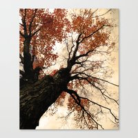 Great Heights Canvas Print