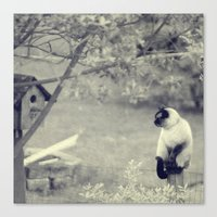 Sitting, Waiting, Wishing Canvas Print