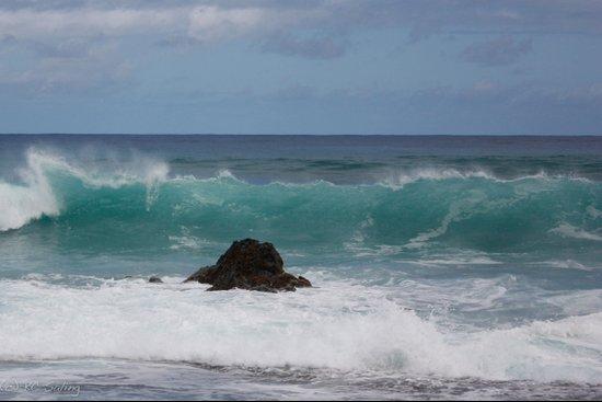 Big Waves Art Print