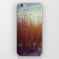 Waterside iPhone & iPod Skin