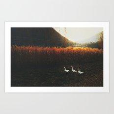Walking geese Art Print