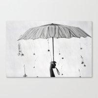 Raining Daisies  Canvas Print