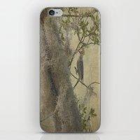 In The Moss iPhone & iPod Skin