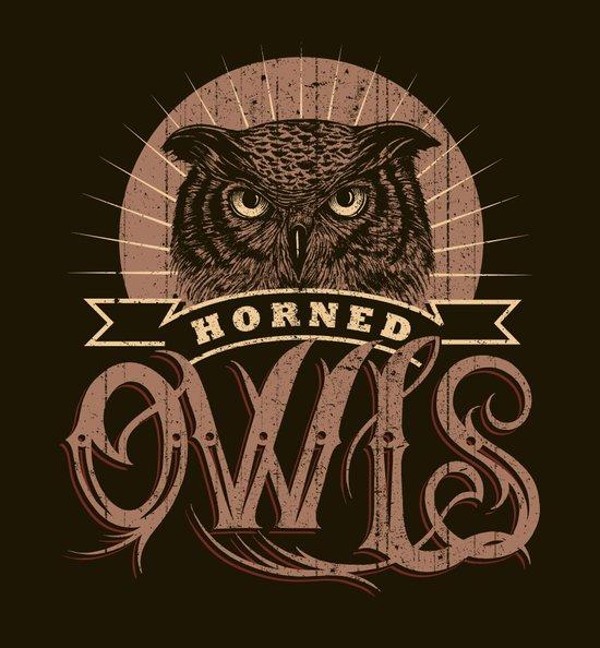 Team Owl Canvas Print