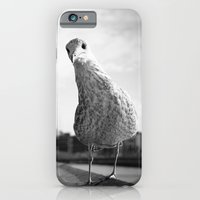 Inquisitive Seagull iPhone 6 Slim Case