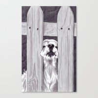 Can't Quite Fit Canvas Print
