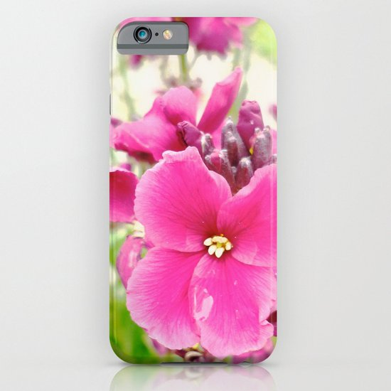 Chartwell iPhone & iPod Case